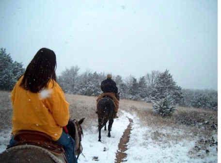 Best 25+ Horseback riding ideas on Pinterest | Horseback riding ...