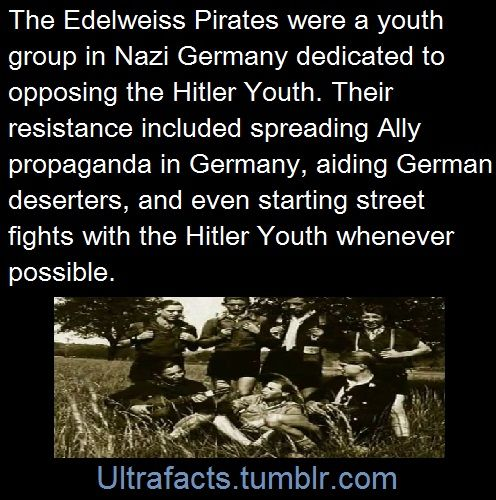 Hitler Quotes On Youth: 54 Best Sophie Scholl And Those Who Chose Moral Courage