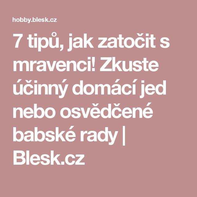 7 tipů, jak zatočit s mravenci! Zkuste účinný domácí jed nebo osvědčené babské rady | Blesk.cz