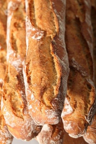 Mastering the French Baguette - let's do this (less laborious than the 80% hydration baguette)