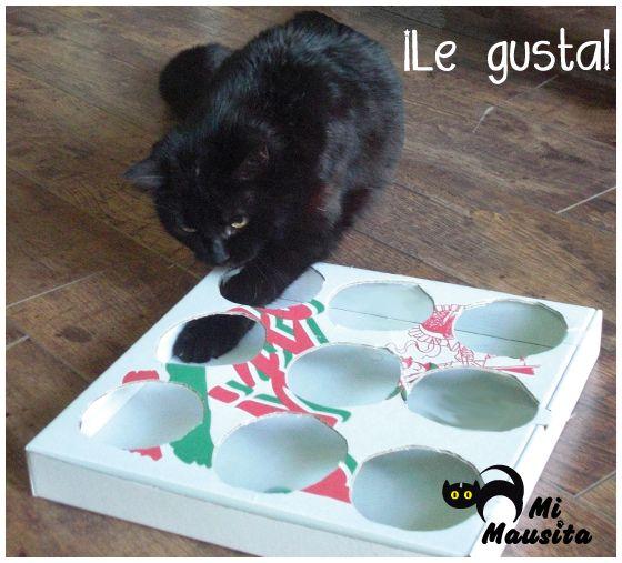 Juguetes caseros para gatos DIY