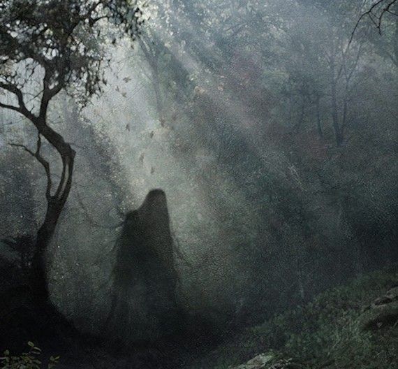 Hoia-Baciu-Haunted-Forest-Romania