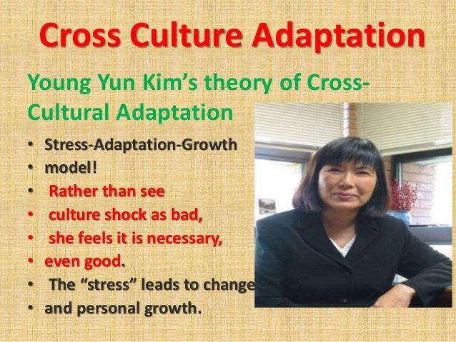 Cross-Cultural Adaptation Theory - Young Yun Kim (1995