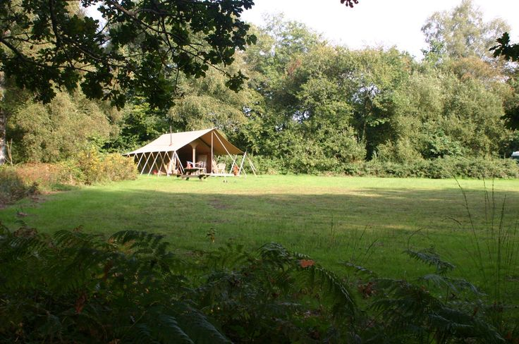 Driftaway Glamping,  Forton, Chard, Somerset, England. Camping. Campsite. Glamping. Holiday. Travel. Countryside. Walks. Explore. Outdoors.