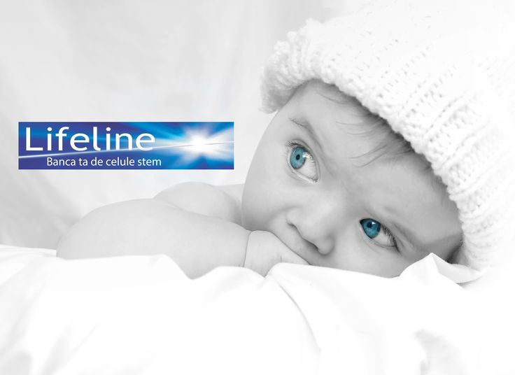 Lifeline face diferenta in domeniul celulelor stem.