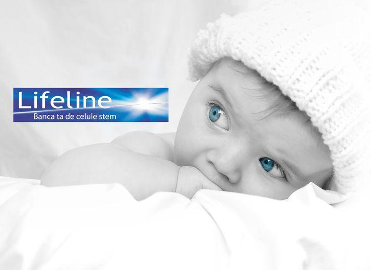 Lifeline face diferenta in domeniul celulelor stem.