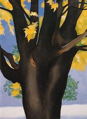 Georgia O'Keeffe, Black Maple Trunk Yellow Leaves, 1929.