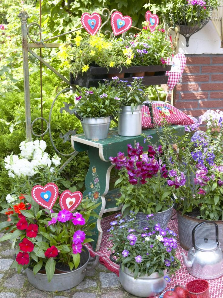 15 besten Balkonblumen Bilder auf Pinterest Garten, Hoch und Oder - tipps pflege pflanzen wintergarten