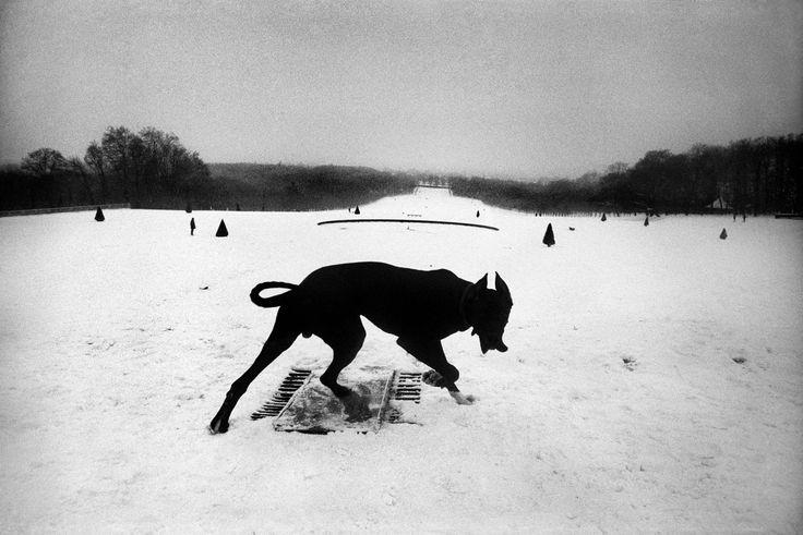 Parc de Sceaux, Hauts-de-Seine, France, 1987; photo by Josef Koudelka