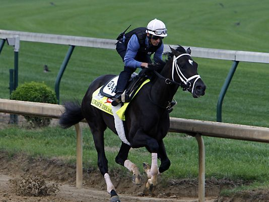 Always Dreaming horse | Derby 2017: 5 horses to watch in 143rd Kentucky Derby / Kentucky Derby ...