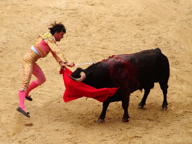 matador: Animal And, 10 Animal, Capes, Animal Facts, Bull Myth, Didn T, Angry, Animal Include, Colors Flags