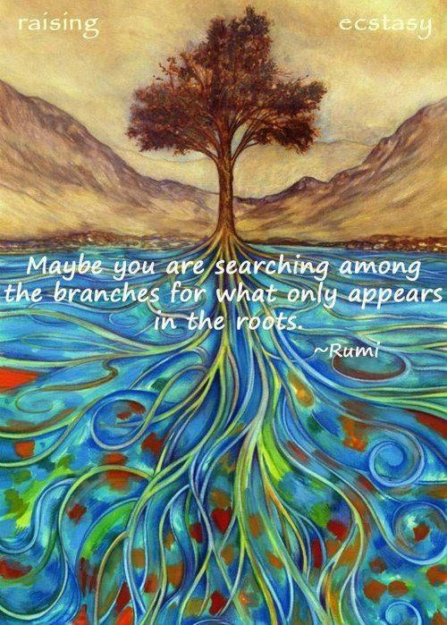 Maybe we are searching among the branches for what only appears in the roots - Rumi