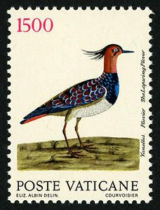 "Lapwing Plover: On June 13, 1989, Vatican City issued a series of eight stamps featuring images of birds. The images are reproductions of original engravings by Eleazar Albin that are featured in ""Histoire Naturelle des Oiseaux,"" published at The Hague in 1750 and preserved in the library of the Pontifical Lateran University in Rome."