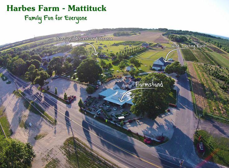 Mattituck - Harbes Farm