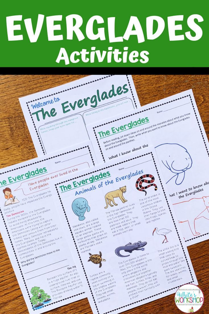 Fourth Graders Love These Everglades Social Studies Lesson Plans And Activities Inc Reading Comprehension Passages Reading Comprehension Comprehension Passage