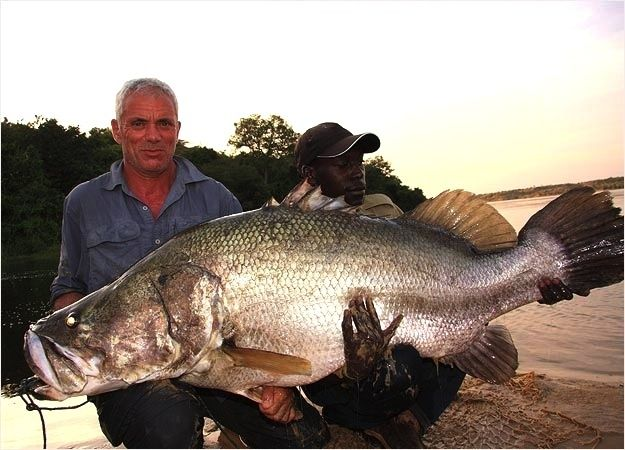 Caught shop Monsters      and Wade    Freakiest   River uk Monsters  Of Fish On Monsters Jeremy      River online The