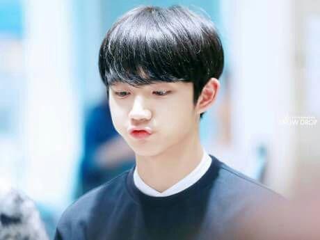 Hyungseob sempat di tolak Woojin yang memiliki sifat yang Cuek. Namun… #fiksipenggemar # Fiksi penggemar # amreading # books # wattpad