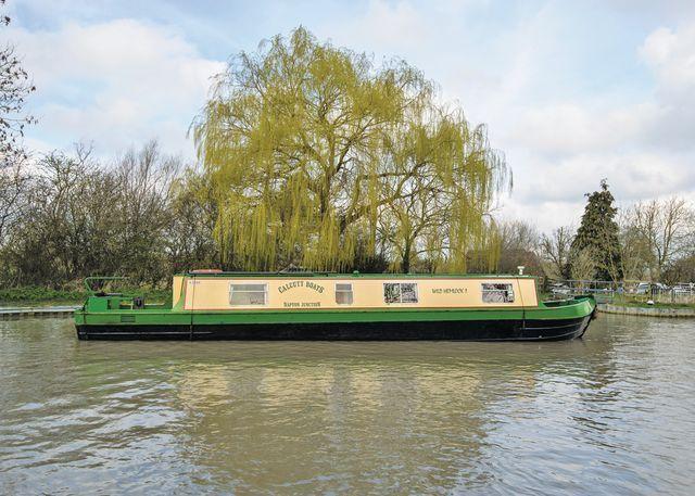 Wild Hemlock #narrowboat #canal #holiday www.calcuttboats.com