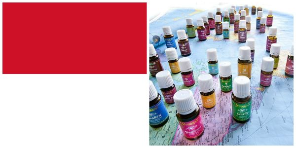 Young Living welcomes Indonesia! On May 2, the Young Living Indonesia market had their official ribbon-cutting ceremony. To enroll as a wholesale member, please go to https://www.youngliving.com/vo/#/signup/new-start?sponsorid=1795137&enrollerid=1795137&isocountrycode=ID&type=member #Indonesia
