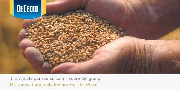Solo la semola migliore diventa pasta De Cecco.  The best pasta is made only with the best durum wheat.  http://www.dececco.it/it_it/cms/la-produzione-della-pasta http://www.dececco.it/it_it/cms/la-produzione-della-pasta