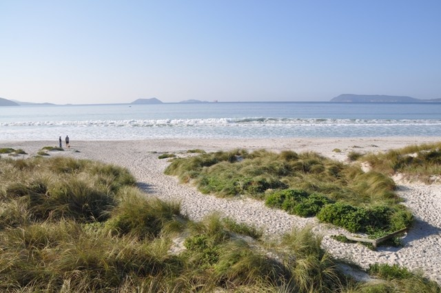 Beach Access from BIG4 Middleton Beach Holiday Park