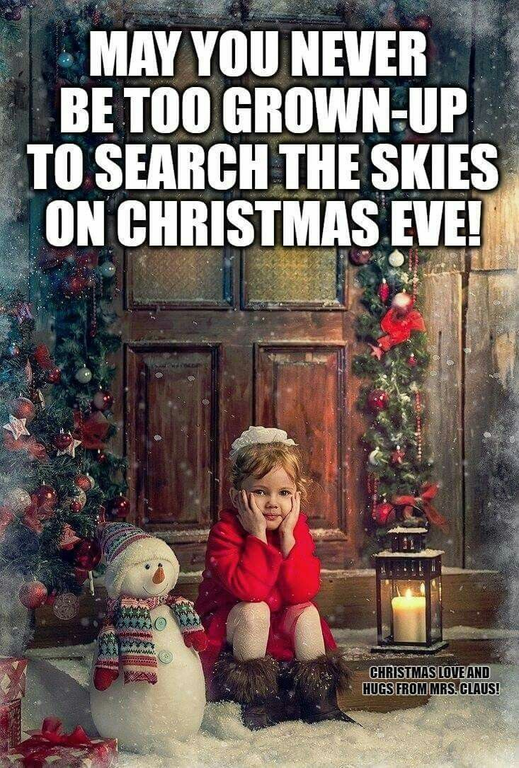 May You Never Be To Grown Up To Search The Skies On Christmas Eve!
