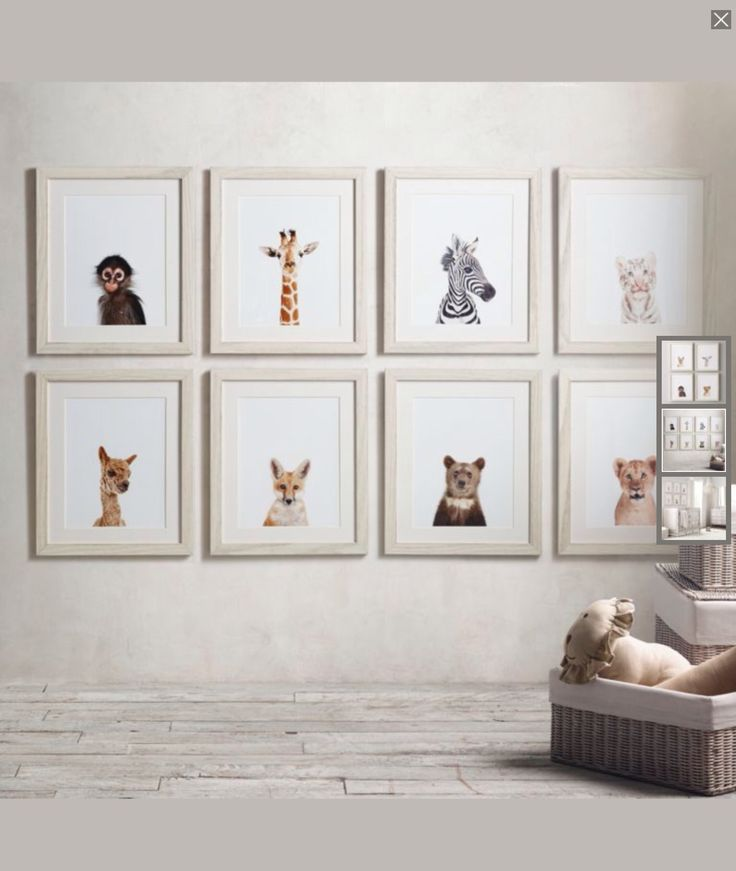 Love these animal pictures