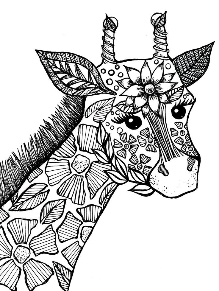 Giraffe adult coloring book page more