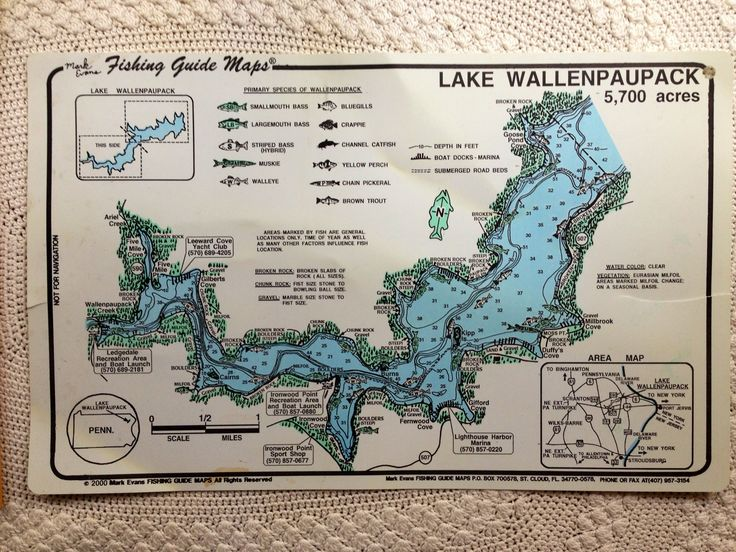 28 best images about area map of lake wallenpaupack on for Lake wallenpaupack fishing