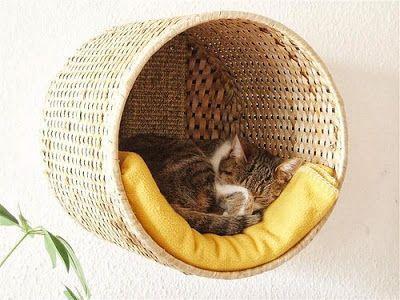 wicker basket cat wall bed