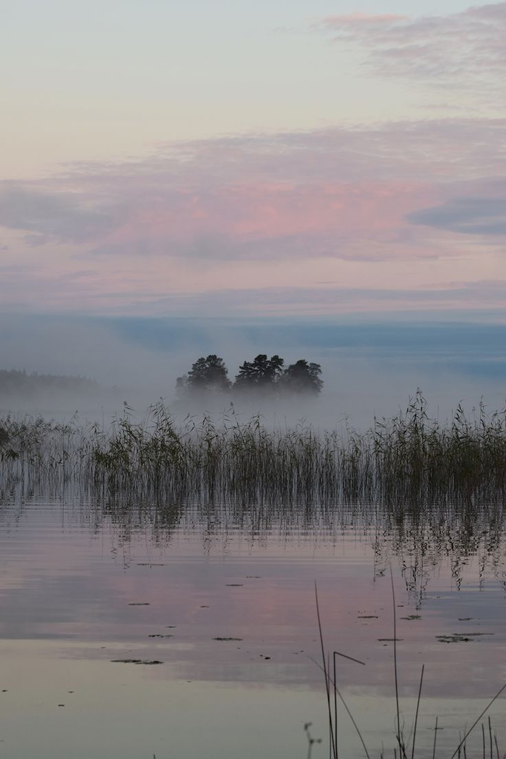 Ajisa Letic - Mystisk sjö. Pastel photograph of a foggy sunset by the lake. Available as poster and laminated picture at Printler, the marketplace for photo art.
