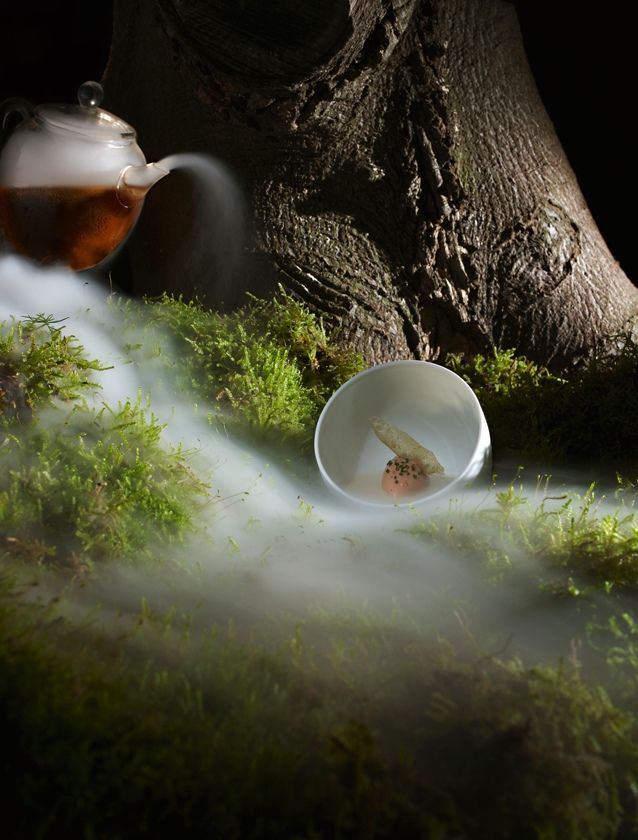 One of the 14 courses I had at The Fat Duck!    The Fat Duck by photographer DOMINIC DAVIES