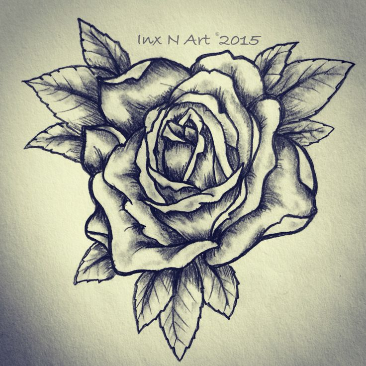 rose tattoo sketch drawing by ranz pinterest drawings tattoo sketches and sketches. Black Bedroom Furniture Sets. Home Design Ideas