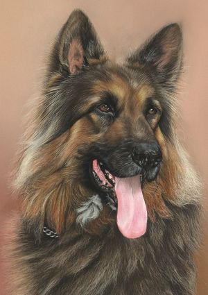 Love this artist's pet portraits!  She is amazingly talented to say the least.