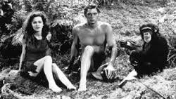 Image result for tarzan and cheetah and jane.