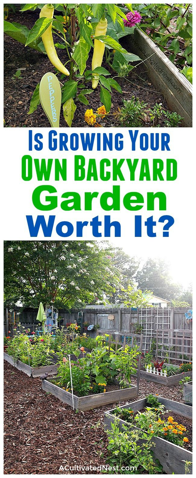 Is Growing Your Own Backyard Garden Worth It A Cultivated Nest Backyard Garden Diy Backyard Garden Small Backyard Gardens Backyard garden grow your own