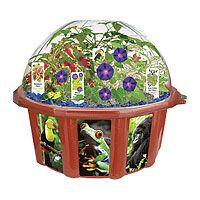 Rainforest Biosphere Dome Terrarium 22$