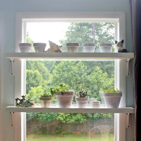 Easy tutorial to make these shelves to grow plants in a sunny window. Keep them safe from curious pets and toddlers!