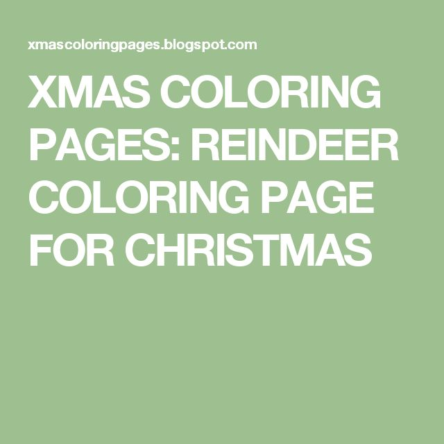 XMAS COLORING PAGES: REINDEER COLORING PAGE FOR CHRISTMAS