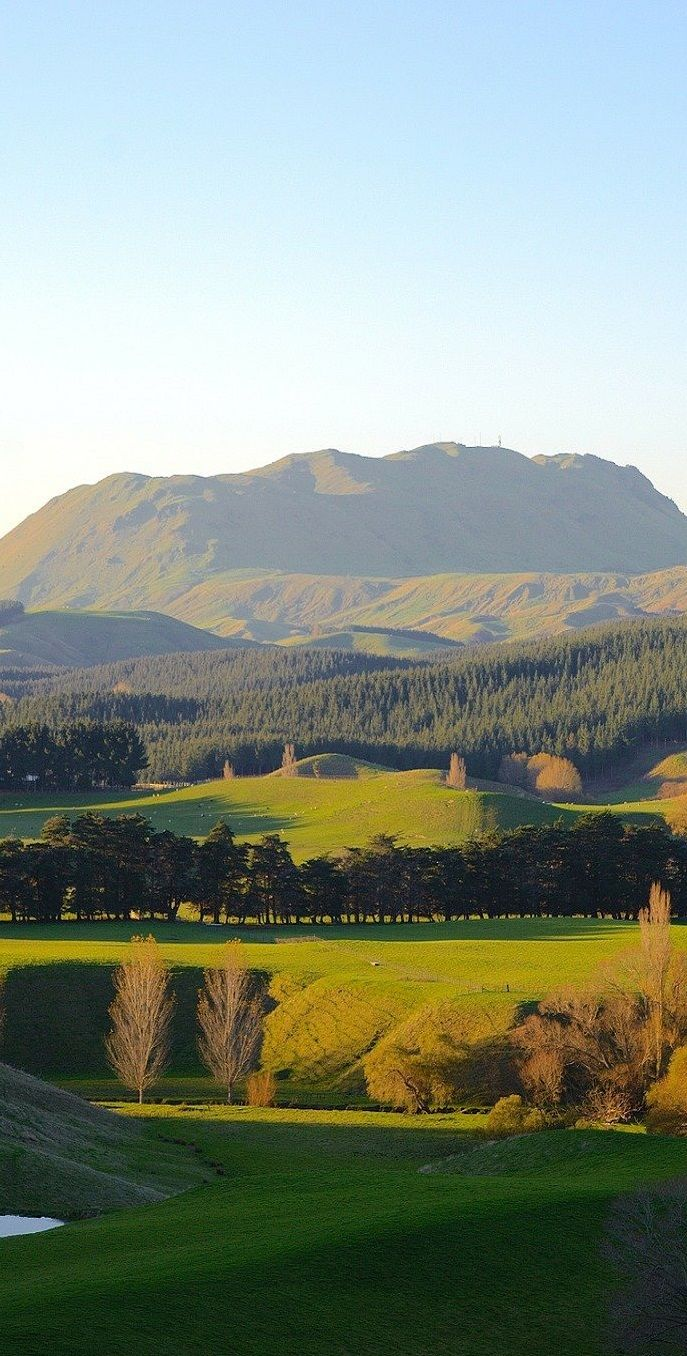 Te Mata Peak, Hawke's Bay, North Island, New Zealand