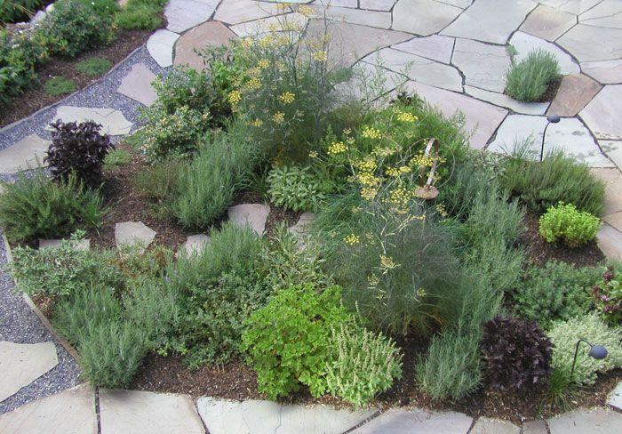 Best 25 small herb gardens ideas on pinterest indoor for Herb garden design
