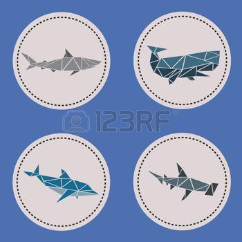 Треугольник водные животные photo