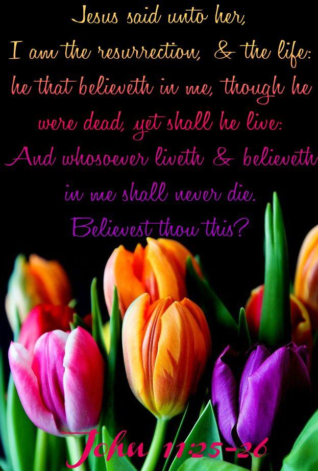 John 11:25-26 KJV