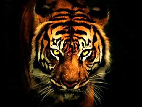 Survivor - Eye Of The Tiger (with lyrics) --BETTER VERSION--