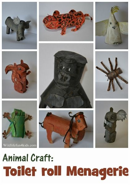Animal crafts with tp rolls