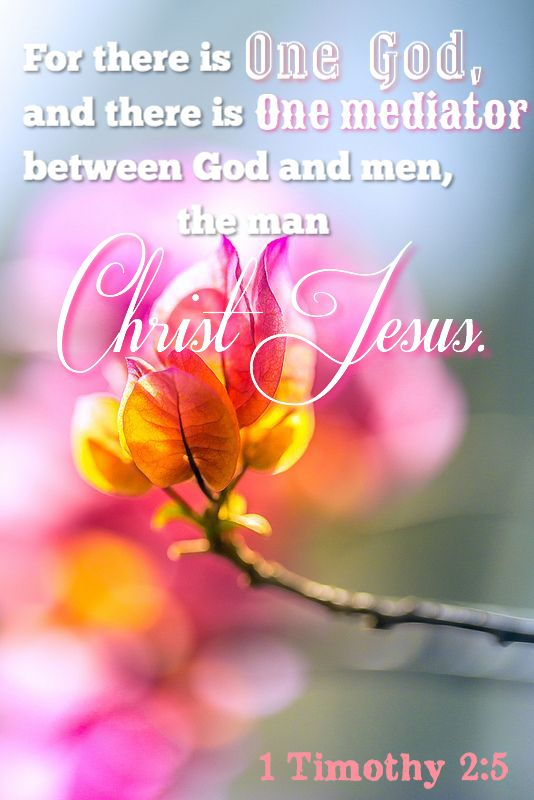 1 Timothy 2:5  -For there is one God, and there is one mediator between God and men, the man Christ Jesus. (KJV)