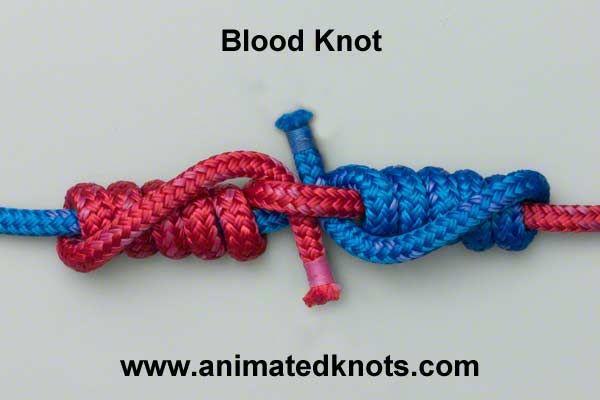 Tie knots like a pro  Tutorial on Blood Knot Tying