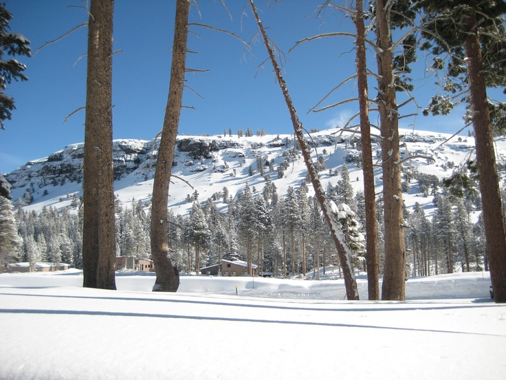 the process of snow skiing Sns delivery offers unrivaled ski rental delivery service in park city our no hassle process is easy and simple from start to finish start your no obligation reservation online today.