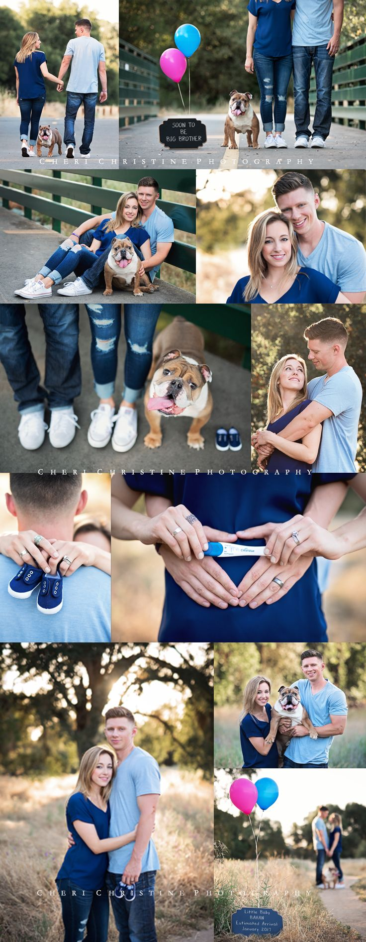 Pregnancy Reveal with Dog  Cheri Christine Photography  Maternity Pregnancy Family Couples