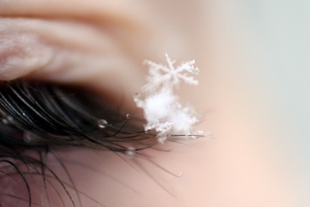 Snowflakes on my eyelashes | my favorite things ...